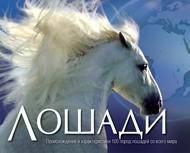 Лошади. Происхождение и характеристики,100 пород. автор:Мойра Харрис, Никола Джейн Суинни