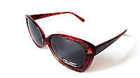 Солнцезащитные очки Provision. Оправа насыщенного бордово-коричневого цвета