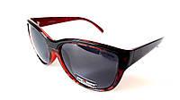 Солнцезащитные очки Provision. Оправа ободковая, чёрно-бордовая