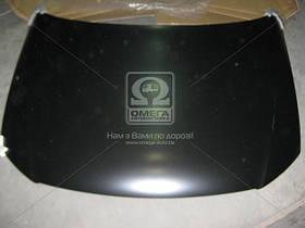 Капот Volkswagen PASSAT B6 05- (производство TEMPEST) (арт. 510610280), AGHZX