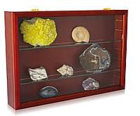 Экспозиционная деревянная витрина для коллекционного материала - SAFE Maxi, фото 1