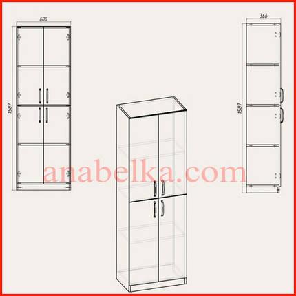 Шкаф распашной    КШ-12 (Компанит), фото 2