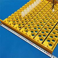 Лоток автоматичного перевороту яєць в інкубаторі на 156 перепелиних яєць