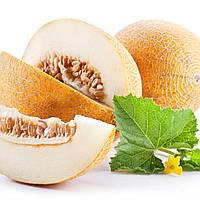 Масло дыни - Общеукрепляющее, мочегонное и глистогонное средство (Алтайвитамины)