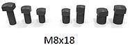 Болты винты для клиньев рейсмуса фуганка  8*18 мм (8х18)