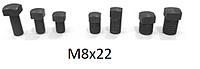 Болты винты для клиньев рейсмуса  фуганка   8*22 мм  ( 8х22)