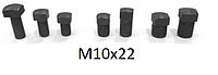 Болты винты для клиньев рейсмуса фуганка 10*22 мм (10х22)