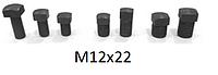 Болты винты для клиньев рейсмуса фуганка  12*22 мм (12х22)