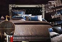 Постельное белье сатин-жаккард FSM707 Семейный Word of Dream