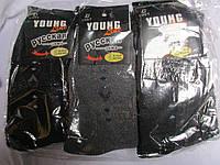 Носки махровые купить оптом (р.42-48)№М-565-22