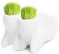 Травянчик керамический двойной белый. Пара лежит