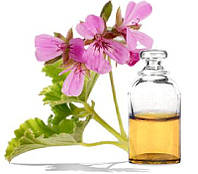 Алтайвитамины Эфирное масло герани - Антисептическое, бактерицидное, заживляющее средство