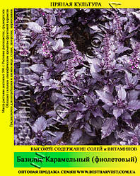 Насіння базиліка Фіолетовий Карамельний 0,2 кг