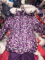 Зимний комбинезон (костюм) для девочки Сиреневый в горошек