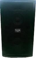 Аренда акустической системы T.C.M - 600 Professional