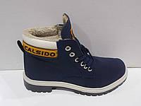 Ботинки повседневные Calsido с мехом р.36-44
