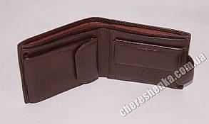 Кошелек кожаный Tailian T115D-12H09-B, фото 2
