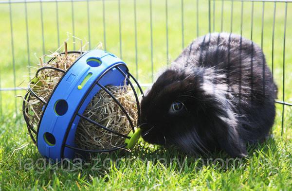 Savic БАННИ КОЛЕСО (Bunny Toy) кормушка для сена и лакомств для грызунов, фото 2