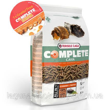 Versele-Laga Complete КАВИА КОМПЛИТ корм для грызунов, морских свинок, фото 2