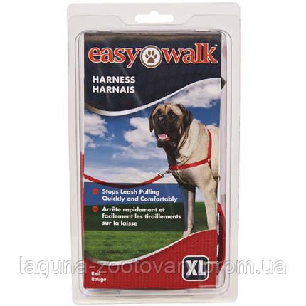Premier ЛЕГКАЯ ПРОГУЛКА (Easy Walk) антирывок шлея для собак, фото 2