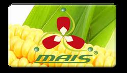 Семена кукурузы МАИС