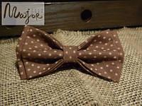 Бабочка коричневая со звездами Классик2