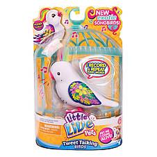 Интерактивная игрушка «Little Live Pets» (28235) птичка Сладкий Лулу (Honey Lulu), фото 2
