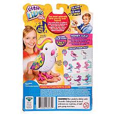 Интерактивная игрушка «Little Live Pets» (28235) птичка Сладкий Лулу (Honey Lulu), фото 3
