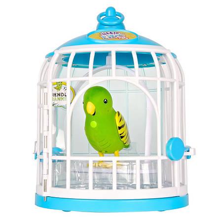 Интерактивная игрушка «Little Live Pets» (28023) птичка в клетке Френки (Frankie), фото 2