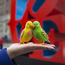 Интерактивная игрушка «Little Live Pets» (28023) птичка в клетке Френки (Frankie), фото 3