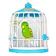Интерактивная игрушка «Little Live Pets» (28023) птичка в клетке Френки (Frankie), фото 5