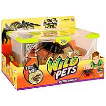 Интерактивная игрушка «Wild Pets» (29002) логово паука и его житель, фото 2