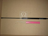 Амортизатор багажника л=п REN KANGOO 97-09 (Производство Magneti Marelli кор.код. GS0127) 430719012700