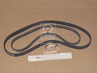 Ремкомплект приводного ременя (Производство ContiTech) 6PK1059T2