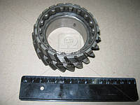 Шестерня 4-5 передний вала вторичный ЗИЛ,ПАЗ,МАЗ (двигатель 245) зубьев = 21 (Производство Украина)