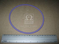 Уплотнительное кольцо 142,6 X154,2 X 5,8 lila SH65 / FPM RD (прокладка гильзы) (пр-во Elring)