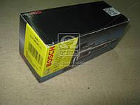 Плунжерная пара VOLVO 9,6/12,0 (6цил.) 91-01 (производство Bosch) (арт. 2418455338), AHHZX
