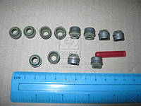 Комплект прокладок, стержень клапана N/EX AUDI/MB/VW 6мм 12шт (пр-во Corteco)