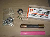 Шкворень в комплект (комплектна одну сторон) ГАЗ 53,3307 (с подшипниками)  3307-3000100-11