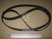 Ремень поликлиновый 6PK1980 (Производство DONGIL) 6PK1980