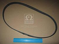 Ремень поликлин. 6PK1105 (пр-во DONGIL)