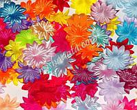 Пресс-цветочки 10 , ассорти