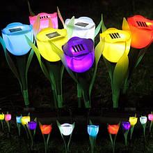 Сонячний світильник - тюльпан для саду