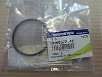 Сальник (Производство SsangYong) 0179972148