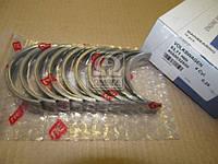 Вкладыши коренные VAG 0,25mm 1,4-1,6 8V/16V/FSI ( Производство NPR) 60-5003-25