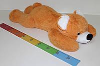 Ведмідь Шалун