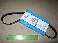 Ремень поликлиновый 5PK716EE (Производство DAYCO) 5PK716EE