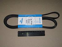 Ремень поликлиновый 5PK2060 (Производство DAYCO) 5PK2060