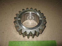 Шестерня вала пониженных передач (зубьев = 20/24) КПП МТЗ 1025, 1221 (Производство МТЗ) 112-1701351