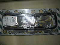 Прокладки ГБЦ R.V.I. MIDR 06.35.40 (Производство Payen) DW050